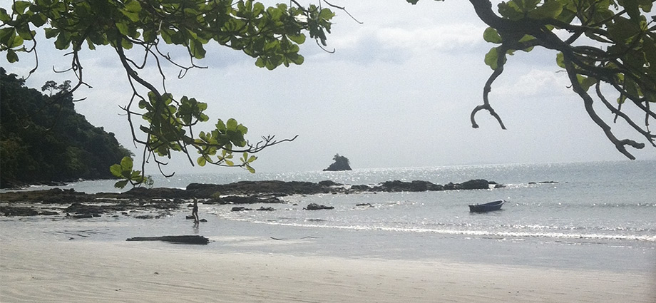 beautiful beach in koh phayam