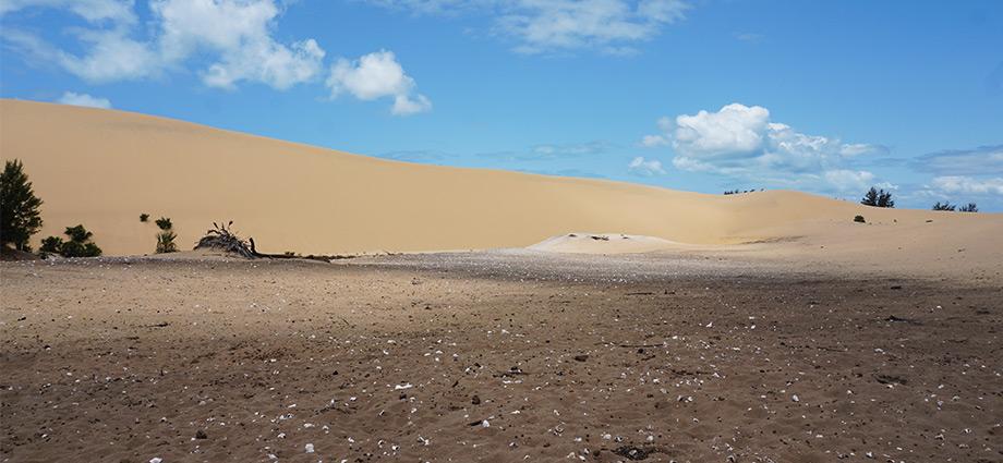 article-image-unique-islands-scenery-bazaruto-island-mozambique