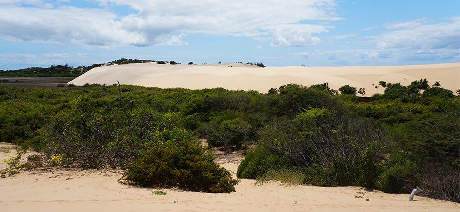 article-image-unique-islands-tropical-scenery-sand-dune-bazaruto-island-mozambique