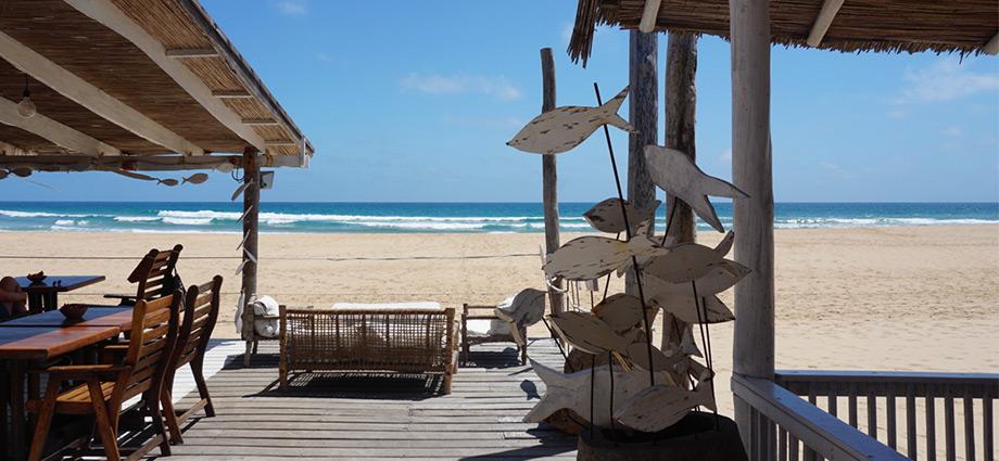 travel-beach-vacation-green-turtle-barra-beach