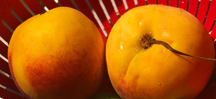 lifestyle-health-healthy-foods-to-boost-your-energy-apricot