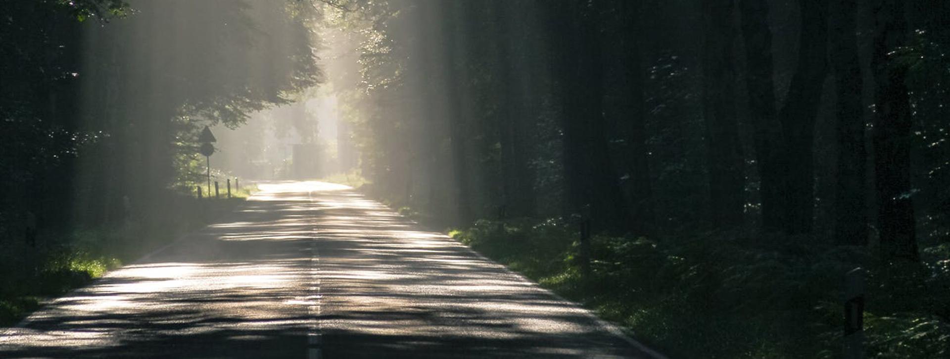 7 Ways to Thrive & Progress Every Day