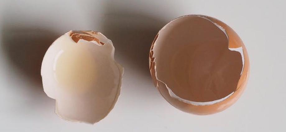 lifehacks-grandmas-best-garden-tips-eggshells