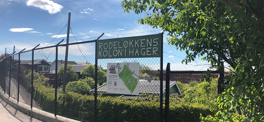 local-hidden-spots-in-oslo-rodeløkka-kolonihage