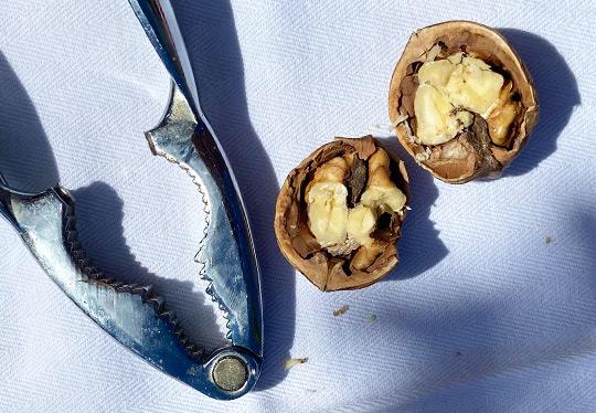 eat-brain-foods-boosting-top-sources
