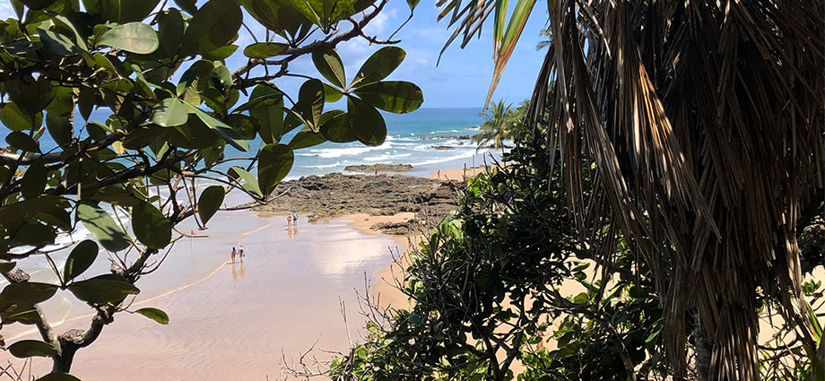 travel-beach-vacation-bahia-brazil-coolest-coast-jungle-view