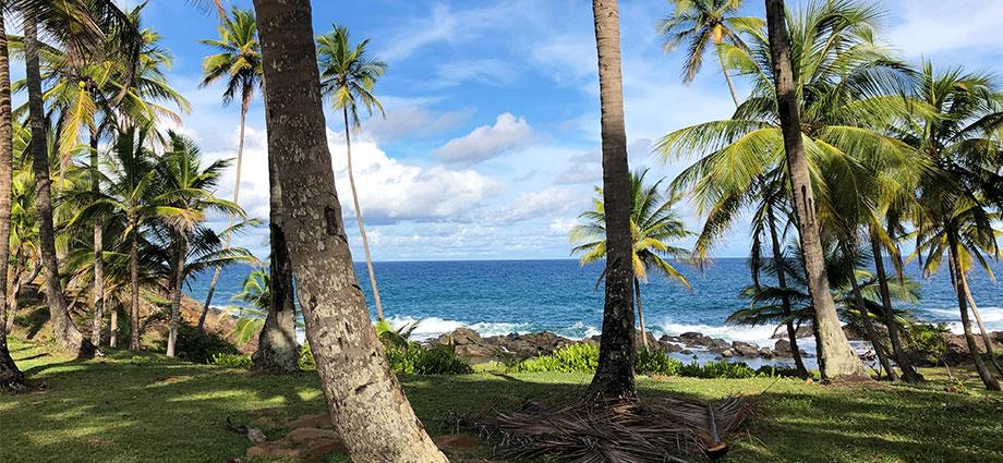 travel-beach-vacation-bahia-brazil-coolest-coast-lush